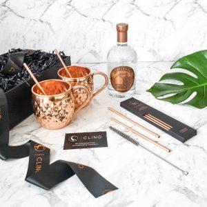 Copper Mug and Gin Gift Set